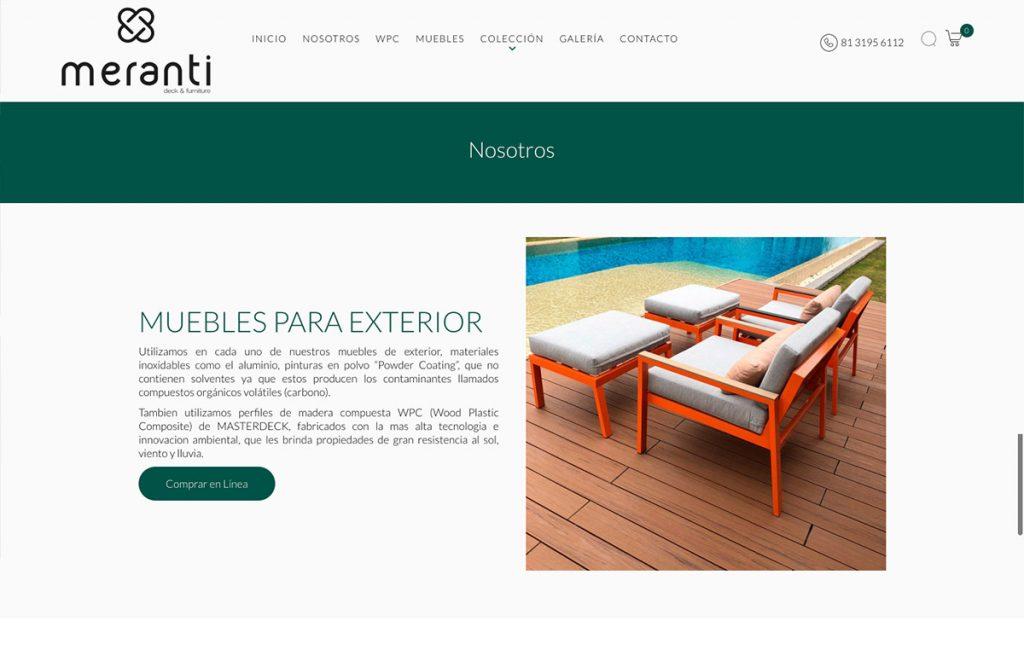 diseño de sitio web en monterrey
