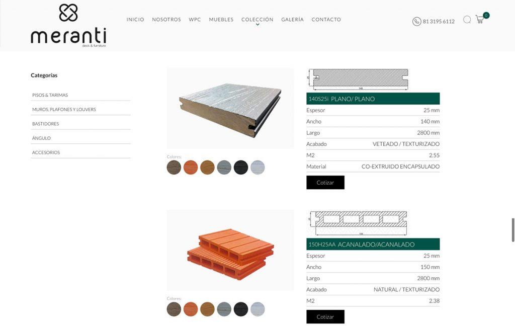 diseño de tienda web monterrey