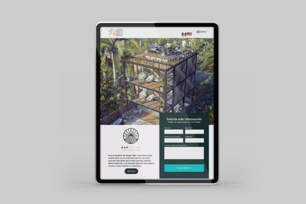diseño web profesional sanpedro