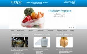 diseno de sitio web para empresa de bolsas