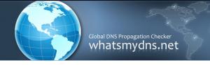 propagacion de dNS
