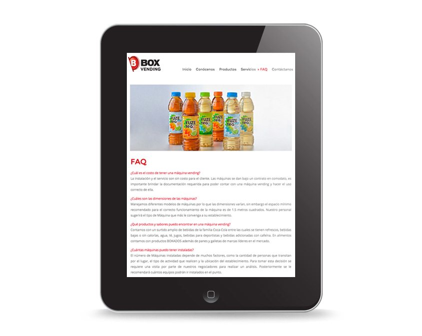 diseño web profesional monterrey