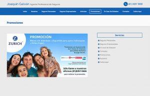diseno web para agente de seguros