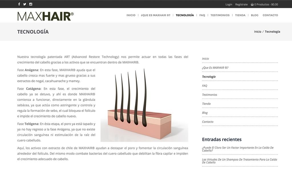 sitio web editable