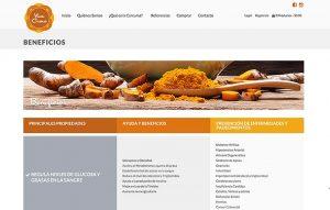 sitio web para ipad