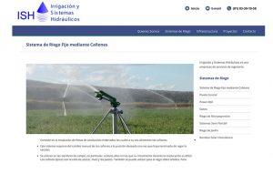 diseño de paginas para industria agropecuaria