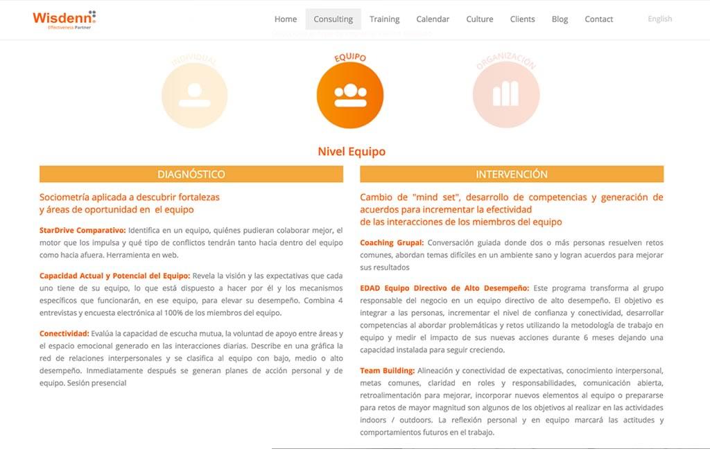 creacion de sitio web consultoria