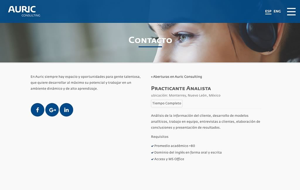 diseño de sitio web responsivo