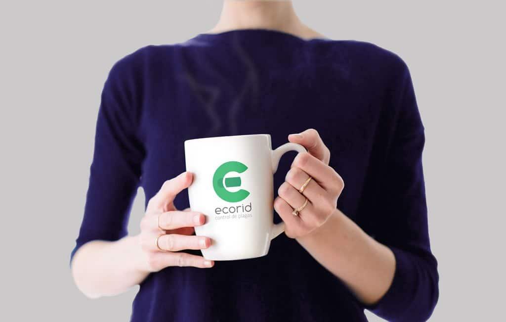 diseño de marca, creación de marca