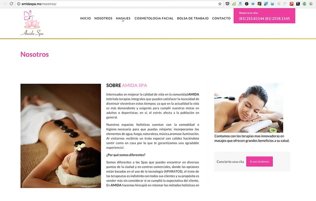 diseño profesional de paginas de internet