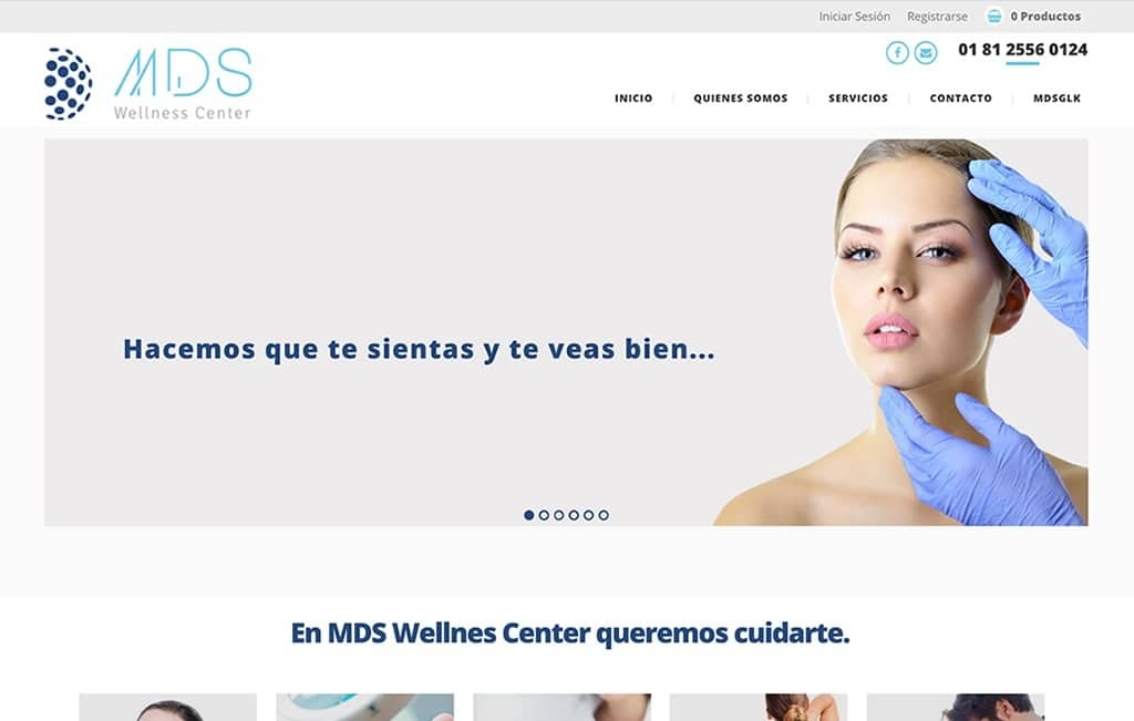 diseño sitio web profesional