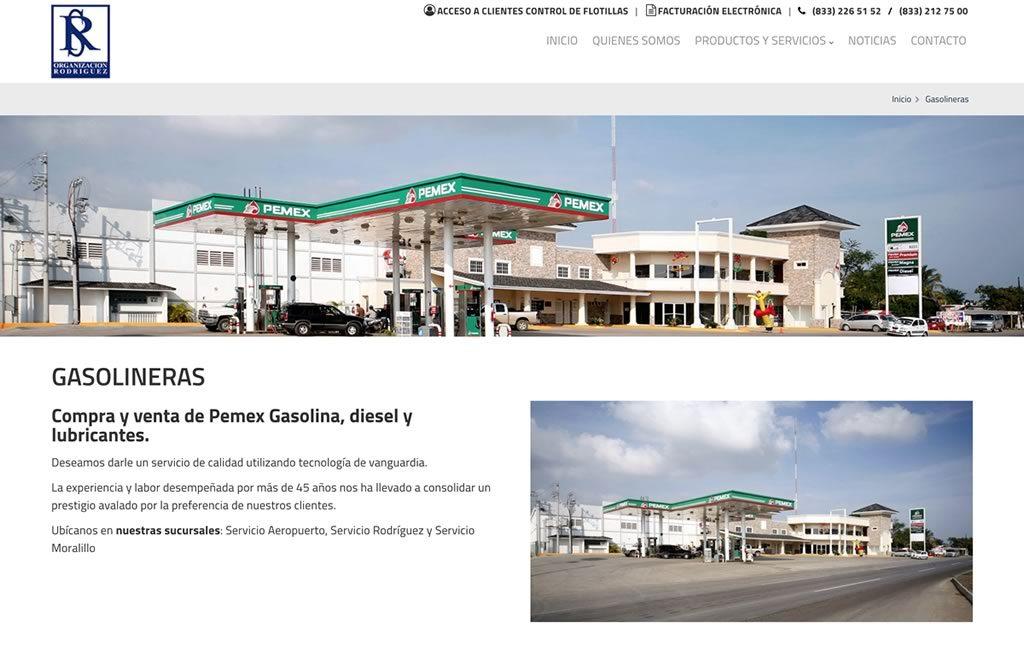 diseño web profesional mexico