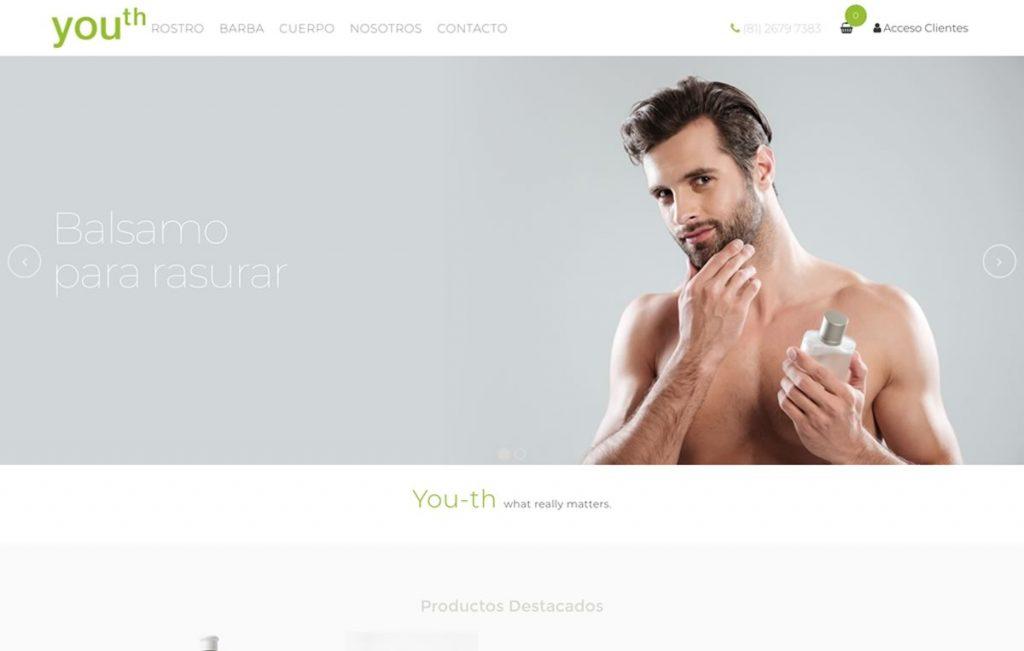 sitio web tienda en linea monterrey