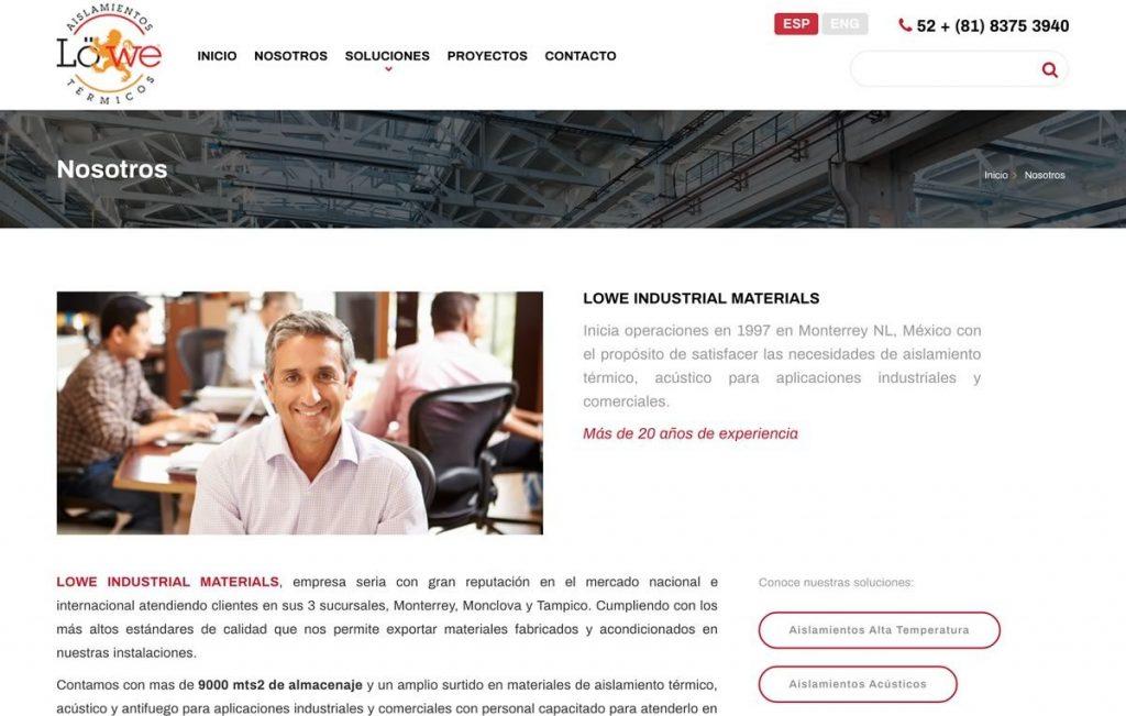 diseño pagina de internet para industria