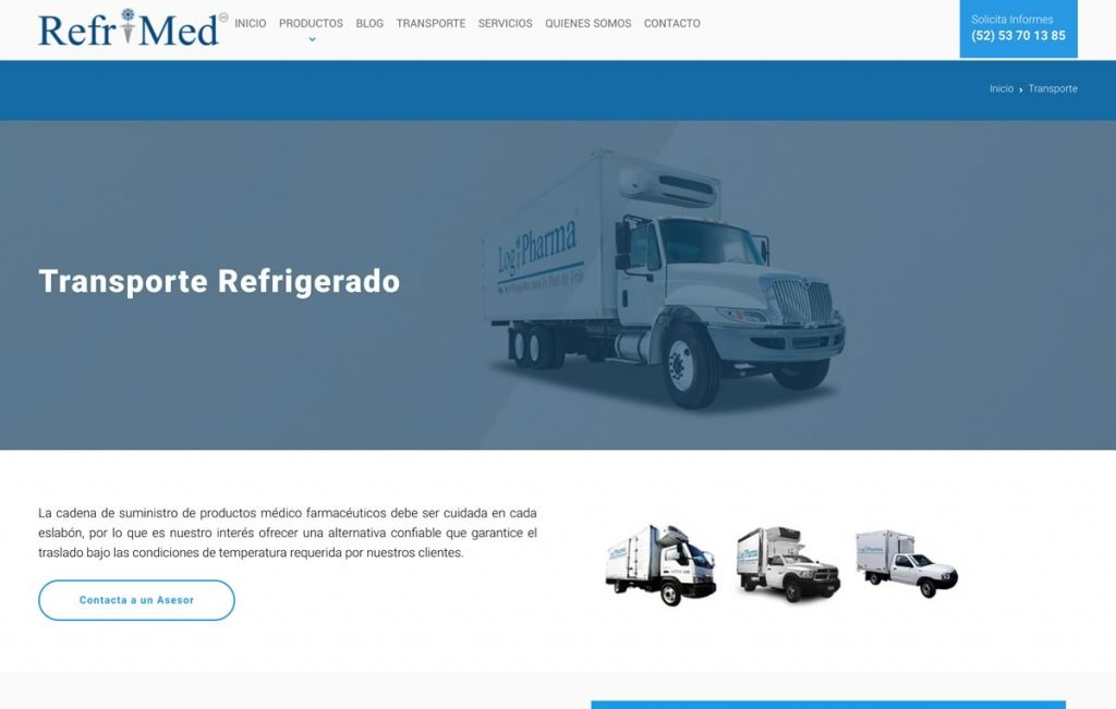diseno_web_profesional