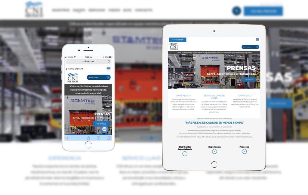 sitio_web_profesional