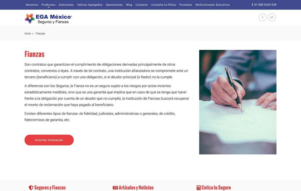 diseno_de_pagina_de_internet_MX