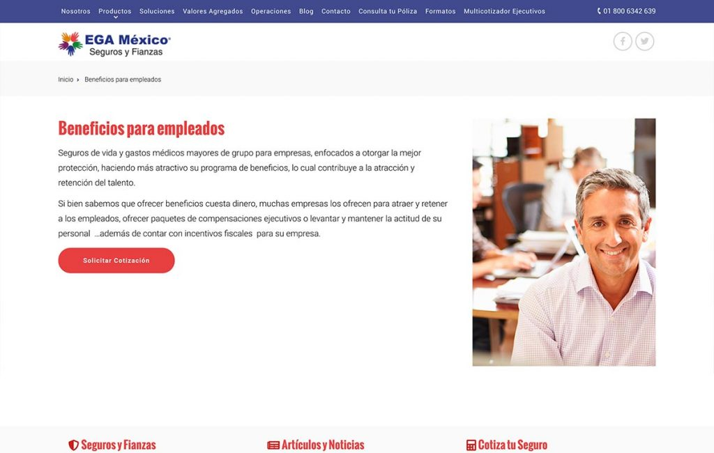 diseno_de_pagina_de_internet_mexico