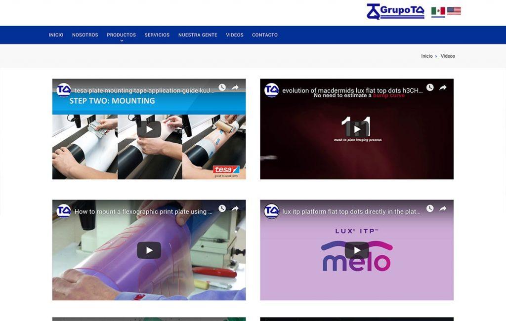 diseño profesional web