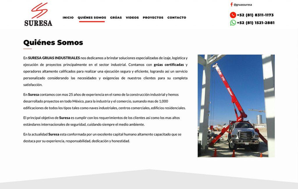 pagina_Web_profesional