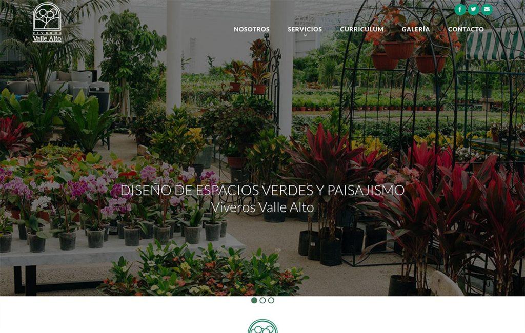 pagina web profesional