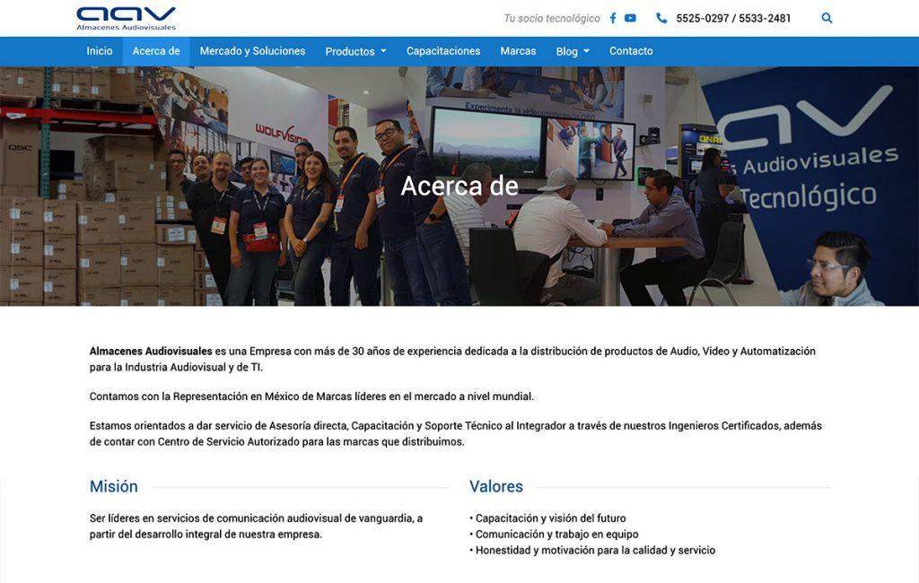 diseño web profesional en monterrey