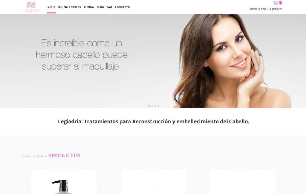 diseño web Ecommerce en monterrey