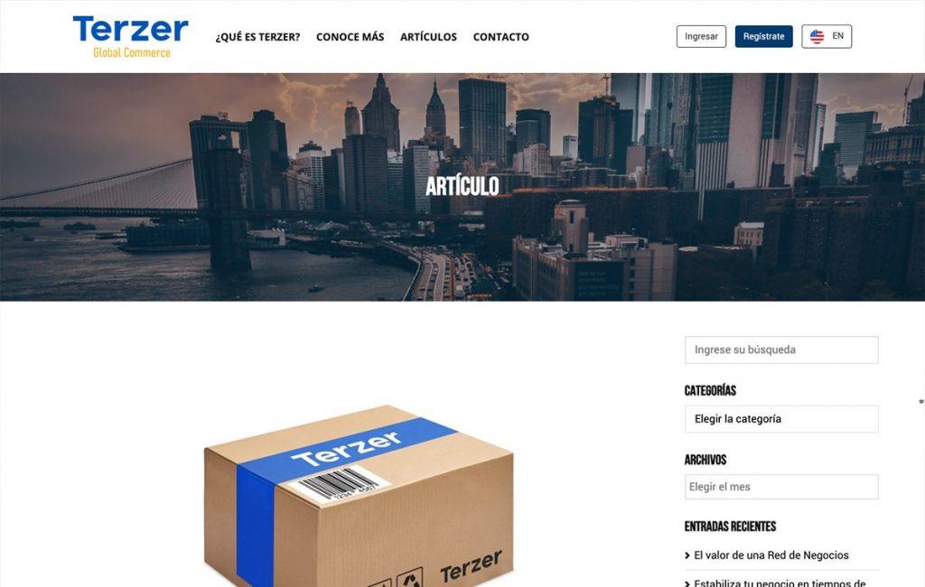agencia de diseño web en sanpedro