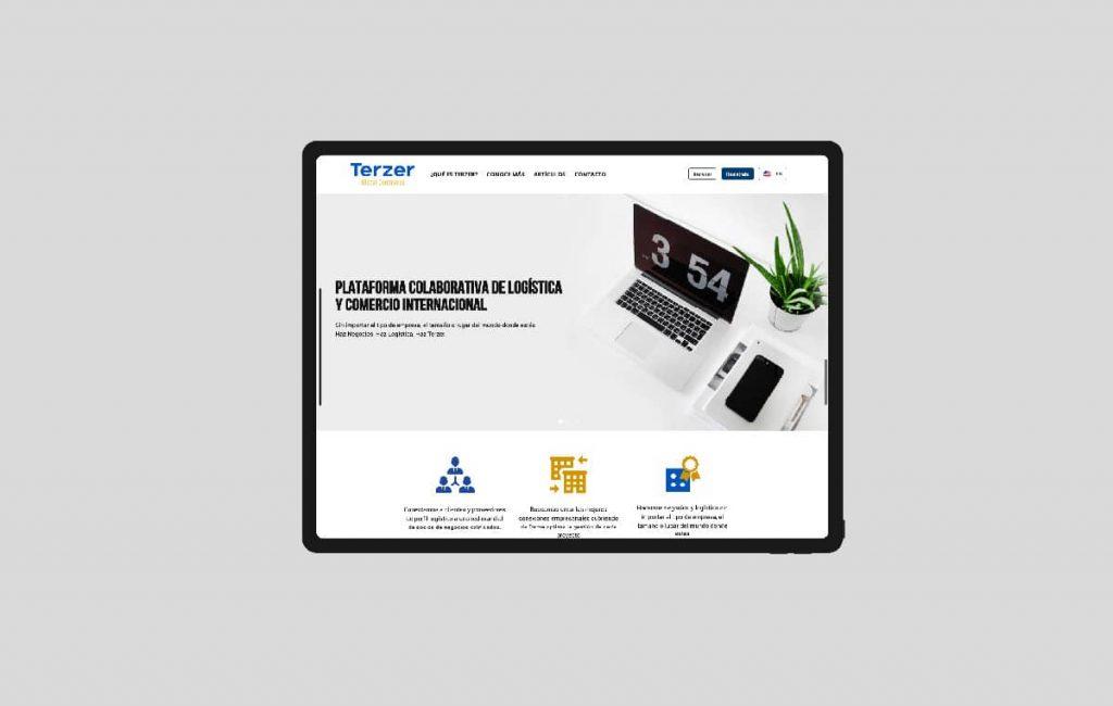 diseño de paginas web profesionales