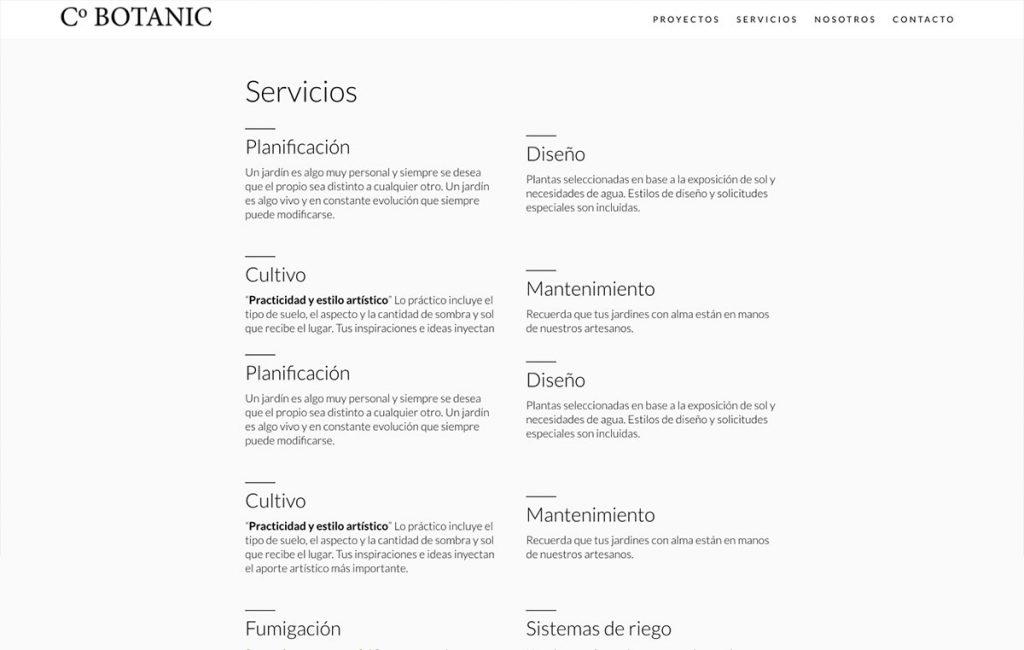 agencia de Diseño web sanpedro