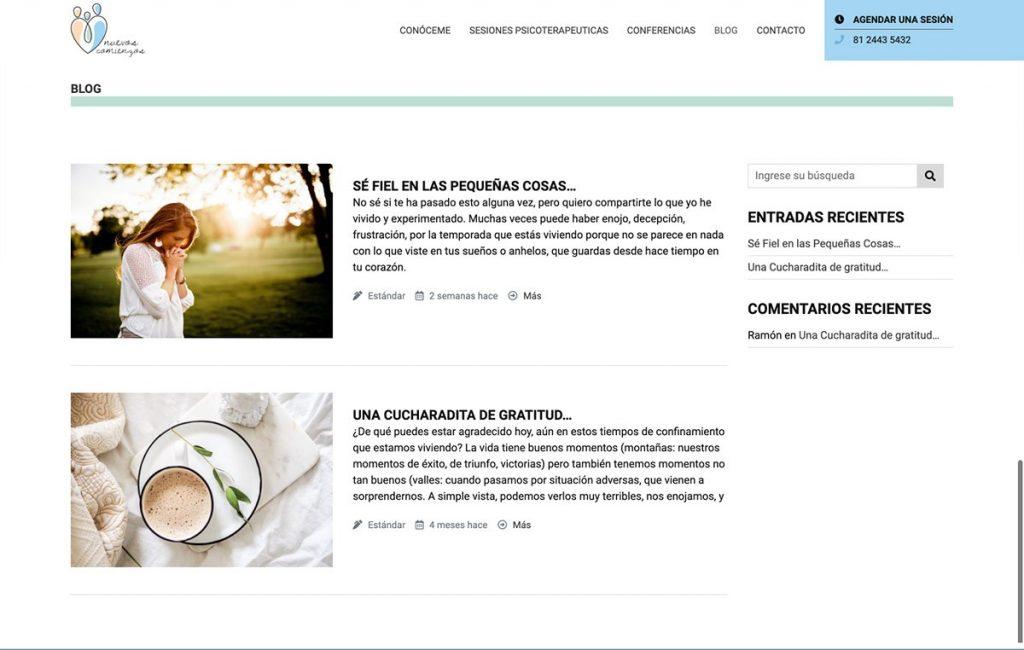 creación de paginas web monterrey