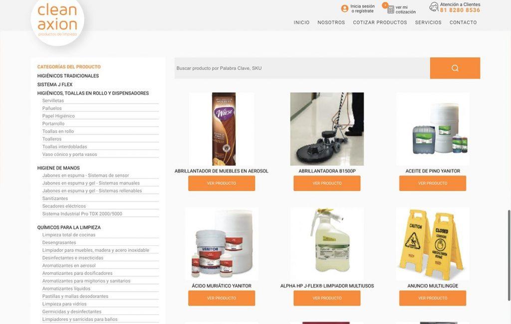 diseño de sitios de internet monterrey