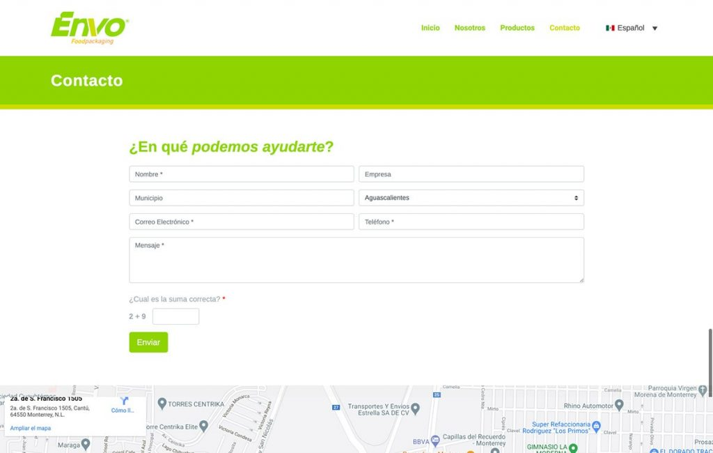 diseño de sitio web profesional monterrey