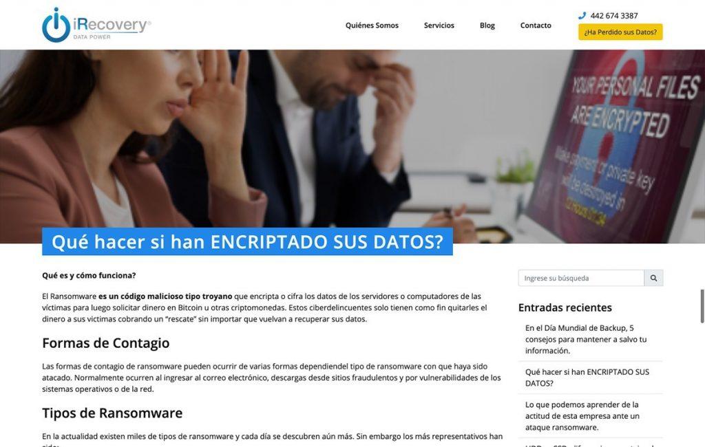 Diseño de pagina web profesional mty