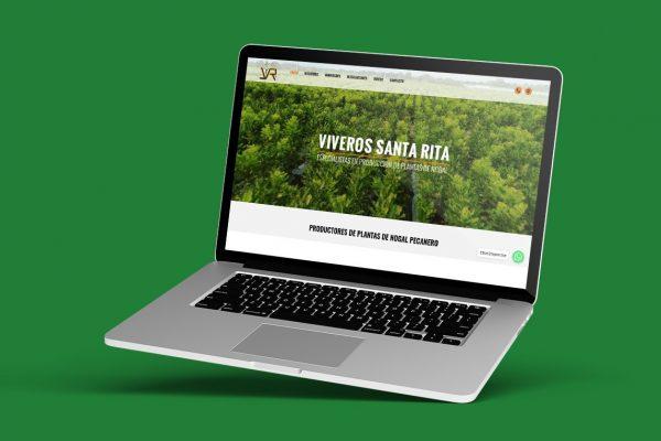 diseño de pagina web en monterrey